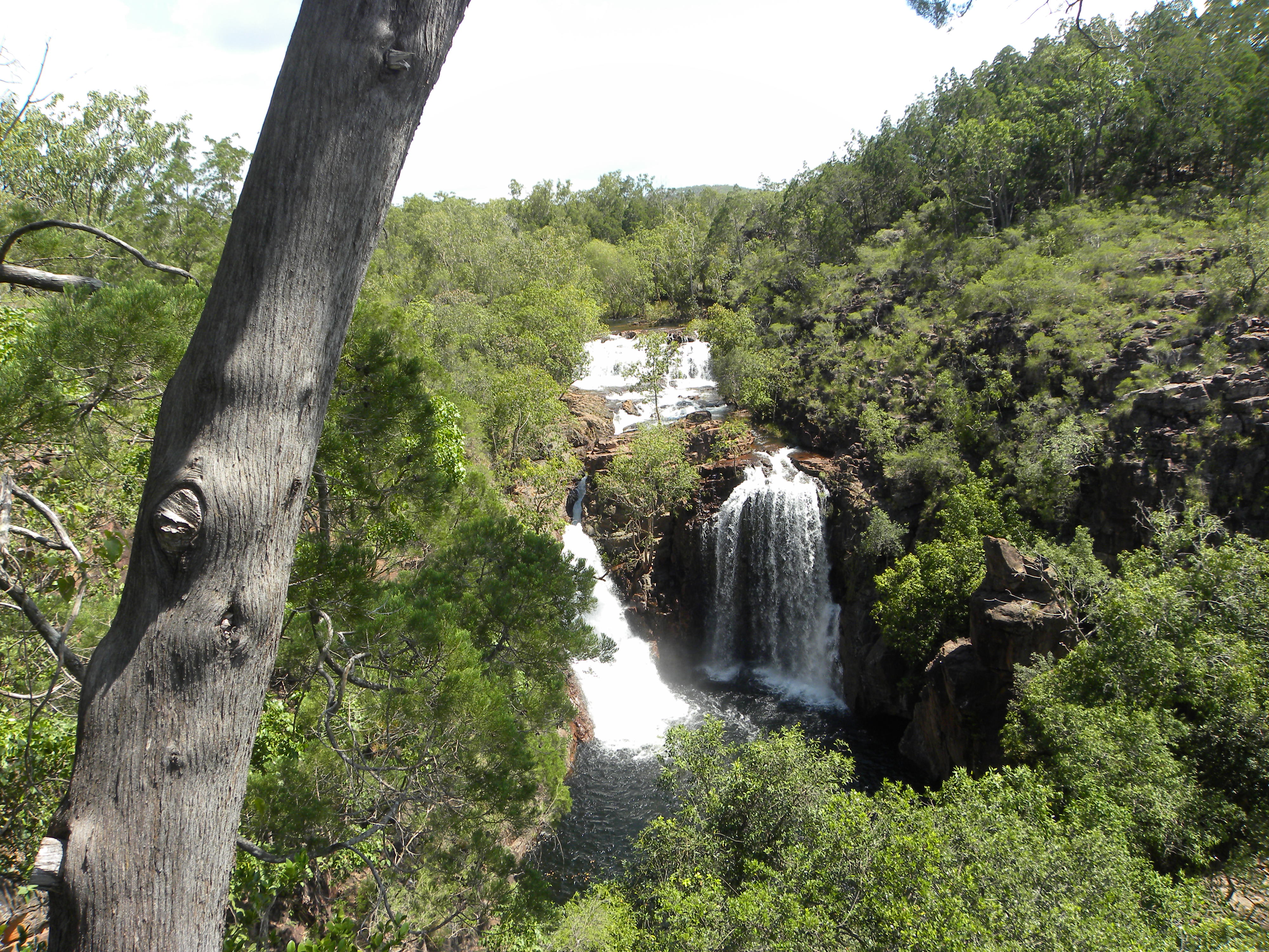 Spectacular Jumping Crocodile Cruise And Litchfield National Park - 10 best sights of litchfield national park
